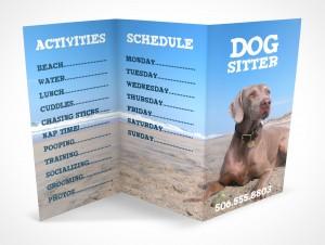 PSD Mockup 3 Panel Tri Fold Brochure Information