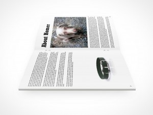 Pamphlet PSD Mock-Up Centerfold Bifold Cover Action Freebie