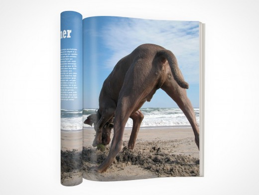 PSD Mock-Up Magazine Rolled Pages Cover Action Top View