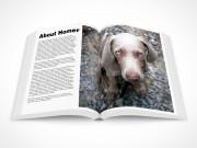 PSD Mockup Softcover Handbook Magazine