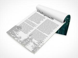 PSD Mockup Open Report Portrait Magazine